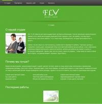 Web-studio FLY green